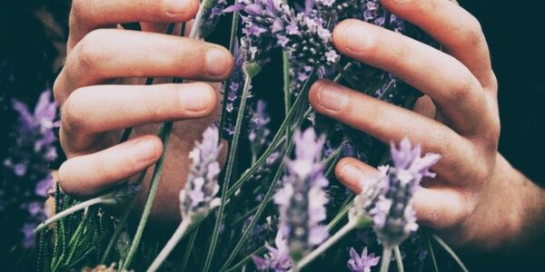 aceites esenciales de Mystic Moments