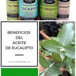 Aceite de eucalipto propiedades